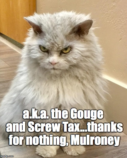 a.k.a. the Gouge and Screw Tax...thanks for nothing, Mulroney | made w/ Imgflip meme maker