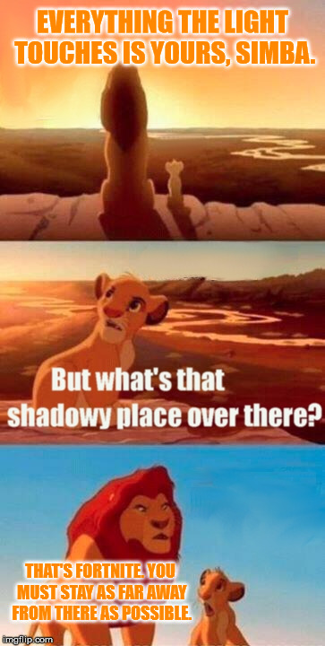 Never go there | EVERYTHING THE LIGHT TOUCHES IS YOURS, SIMBA. THAT'S FORTNITE. YOU MUST STAY AS FAR AWAY FROM THERE AS POSSIBLE. | image tagged in memes,simba shadowy place,simba,fortnite | made w/ Imgflip meme maker