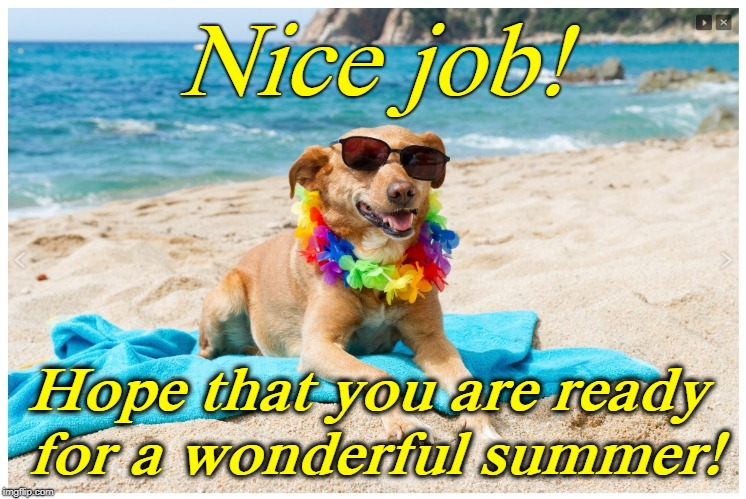 Nice job! Hope that you are ready for a wonderful summer! | image tagged in dog on beach | made w/ Imgflip meme maker