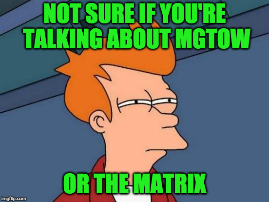 Futurama Fry Meme | NOT SURE IF YOU'RE TALKING ABOUT MGTOW OR THE MATRIX | image tagged in memes,futurama fry | made w/ Imgflip meme maker