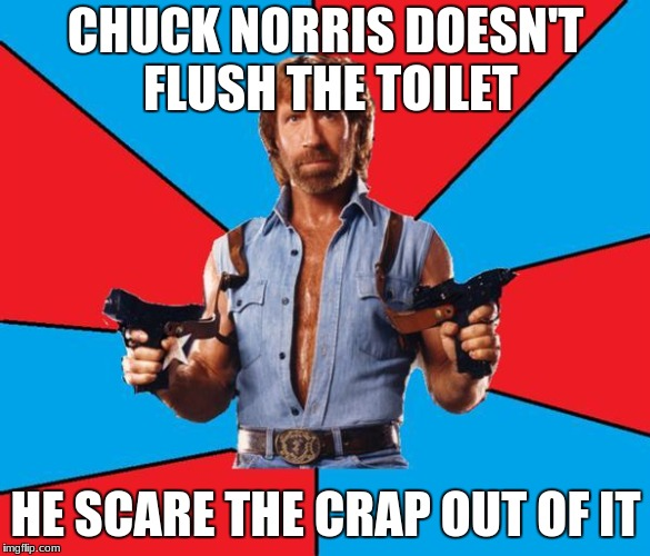 He really doesn't... | CHUCK NORRIS DOESN'T FLUSH THE TOILET HE SCARE THE CRAP OUT OF IT | image tagged in memes,chuck norris with guns,chuck norris,funny,meme | made w/ Imgflip meme maker