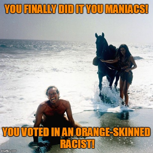 YOU FINALLY DID IT YOU MANIACS! YOU VOTED IN AN ORANGE-SKINNED RACIST! | made w/ Imgflip meme maker
