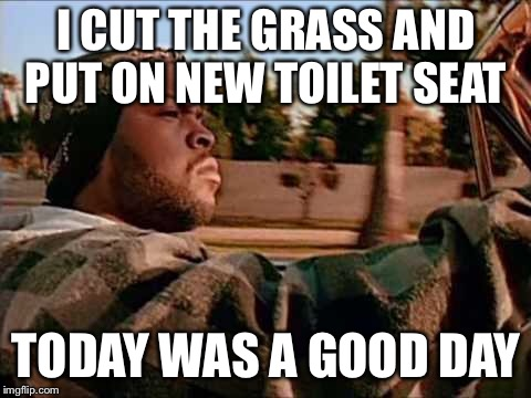 Today Was A Good Day | I CUT THE GRASS AND PUT ON NEW TOILET SEAT TODAY WAS A GOOD DAY | image tagged in memes,today was a good day | made w/ Imgflip meme maker