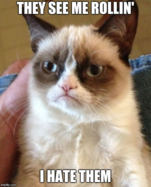 Grumpy Cat Meme | THEY SEE ME ROLLIN' I HATE THEM | image tagged in memes,grumpy cat | made w/ Imgflip meme maker
