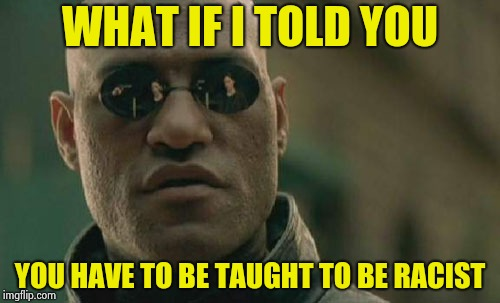 Bad Parenting is the reason behind a lot of our problems | WHAT IF I TOLD YOU YOU HAVE TO BE TAUGHT TO BE RACIST | image tagged in memes,matrix morpheus,tolerance,racism,school shooting | made w/ Imgflip meme maker