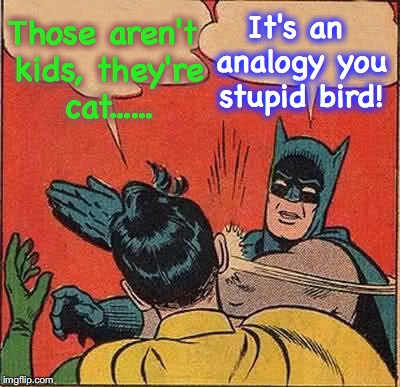 Batman Slapping Robin Meme | Those aren't kids, they're cat...... It's an analogy you stupid bird! | image tagged in memes,batman slapping robin | made w/ Imgflip meme maker