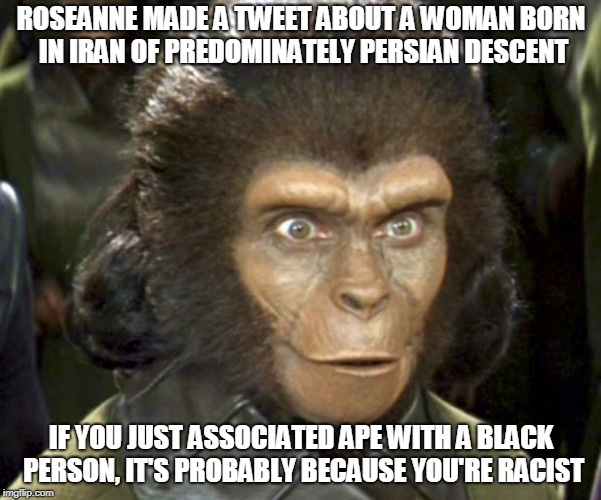 ROSEANNE MADE A TWEET ABOUT A WOMAN BORN IN IRAN OF PREDOMINATELY PERSIAN DESCENT IF YOU JUST ASSOCIATED APE WITH A BLACK PERSON, IT'S PROBA | image tagged in planet of the apes zira | made w/ Imgflip meme maker