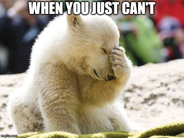 Sad Polar Bear |  WHEN YOU JUST CAN'T | image tagged in sad polar bear | made w/ Imgflip meme maker