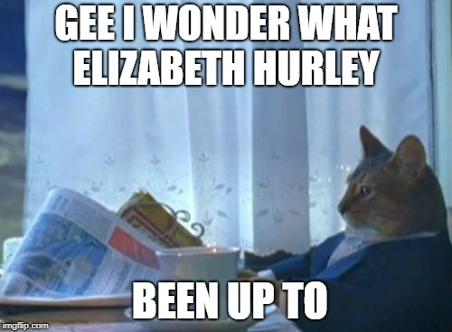 I Should Buy A Boat Cat Meme | GEE I WONDER WHAT ELIZABETH HURLEY BEEN UP TO | image tagged in memes,i should buy a boat cat | made w/ Imgflip meme maker