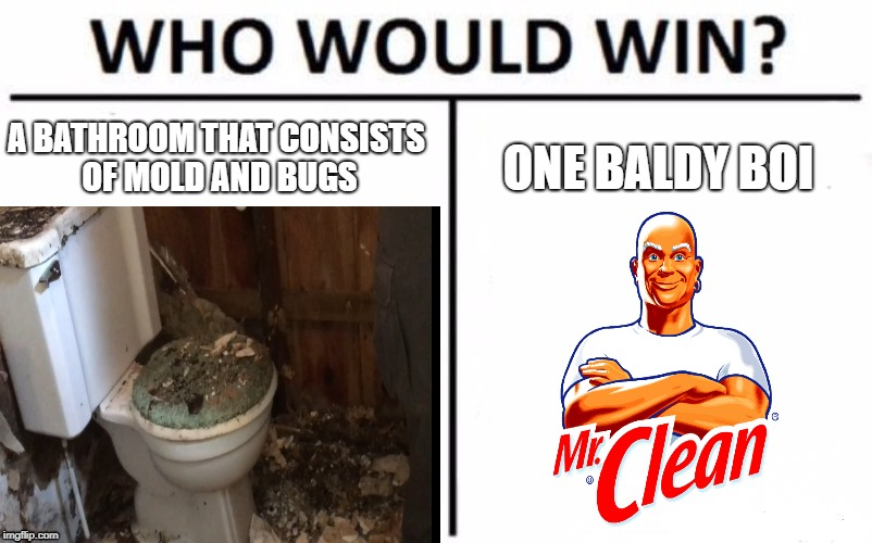 Who Would Win? | A BATHROOM THAT CONSISTS OF MOLD AND BUGS ONE BALDY BOI | image tagged in who would win | made w/ Imgflip meme maker