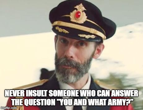 "Captain Obvious | NEVER INSULT SOMEONE WHO CAN ANSWER THE QUESTION ""YOU AND WHAT ARMY?"" 