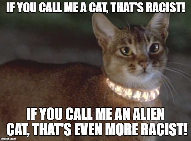 Racist! | IF YOU CALL ME A CAT, THAT'S RACIST! IF YOU CALL ME AN ALIEN CAT, THAT'S EVEN MORE RACIST! | image tagged in cat,cat from outer space,racism | made w/ Imgflip meme maker