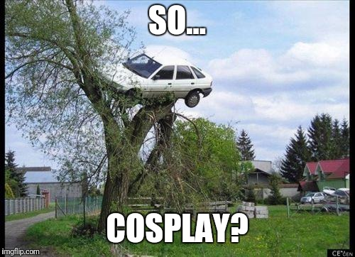 car in tree | SO... COSPLAY? | image tagged in car in tree | made w/ Imgflip meme maker