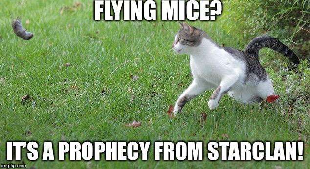 Warrior Cat Meme Memes Gifs Imgflip