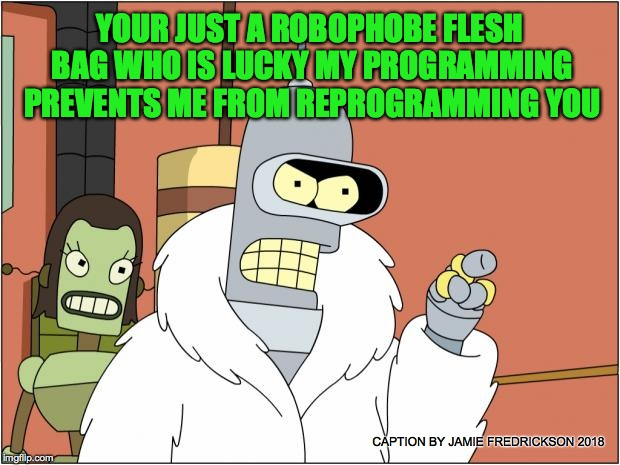 Bender Meme | YOUR JUST A ROBOPHOBE FLESH BAG WHO IS LUCKY MY PROGRAMMING PREVENTS ME FROM REPROGRAMMING YOU CAPTION BY JAMIE FREDRICKSON 2018 | image tagged in memes,bender | made w/ Imgflip meme maker