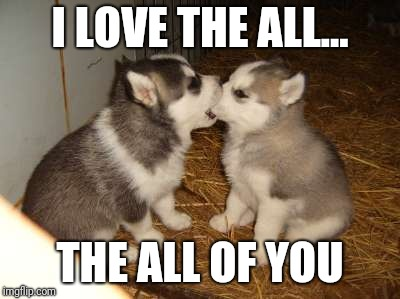 Cute Puppies |  I LOVE THE ALL... THE ALL OF YOU | image tagged in memes,cute puppies | made w/ Imgflip meme maker