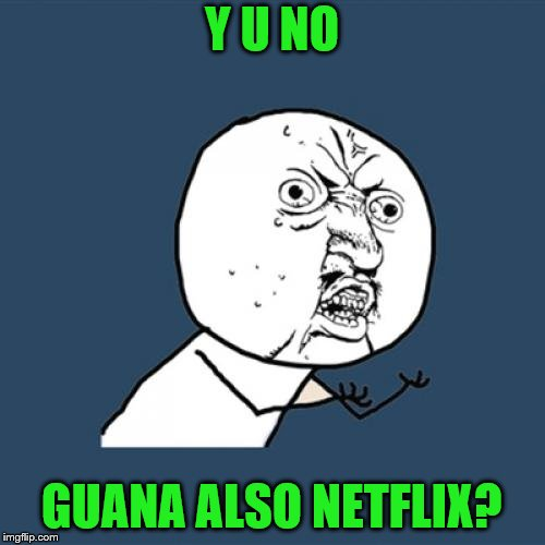 Y U No Meme | Y U NO GUANA ALSO NETFLIX? | image tagged in memes,y u no | made w/ Imgflip meme maker