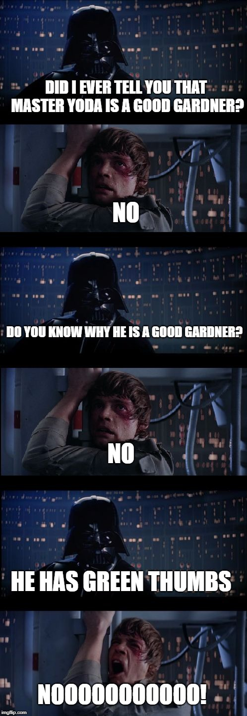 Star wars no No. 2 | DID I EVER TELL YOU THAT MASTER YODA IS A GOOD GARDNER? NO DO YOU KNOW WHY HE IS A GOOD GARDNER? NO HE HAS GREEN THUMBS NOOOOOOOOOOO! | image tagged in star wars no no 2 | made w/ Imgflip meme maker