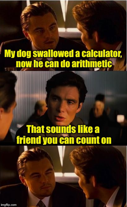 Man's best friend | My dog swallowed a calculator, now he can do arithmetic That sounds like a friend you can count on | image tagged in memes,inception,dogs,calculator,counting,bad puns | made w/ Imgflip meme maker