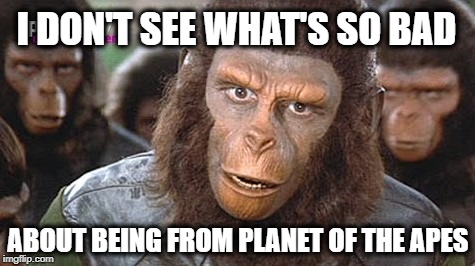 I DON'T SEE WHAT'S SO BAD ABOUT BEING FROM PLANET OF THE APES | image tagged in planet of the apes,roseanne barr,abc sucks,cancelled,comments,what if i told you | made w/ Imgflip meme maker