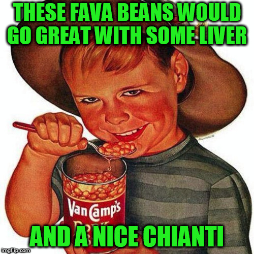 THESE FAVA BEANS WOULD GO GREAT WITH SOME LIVER AND A NICE CHIANTI | image tagged in memes | made w/ Imgflip meme maker