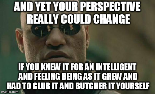 Matrix Morpheus Meme | AND YET YOUR PERSPECTIVE REALLY COULD CHANGE IF YOU KNEW IT FOR AN INTELLIGENT AND FEELING BEING AS IT GREW AND HAD TO CLUB IT AND BUTCHER I | image tagged in memes,matrix morpheus | made w/ Imgflip meme maker