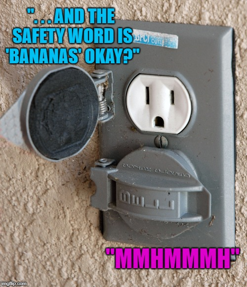 """. . . AND THE SAFETY WORD IS 'BANANAS' OKAY?"" ""MMHMMMH"" 