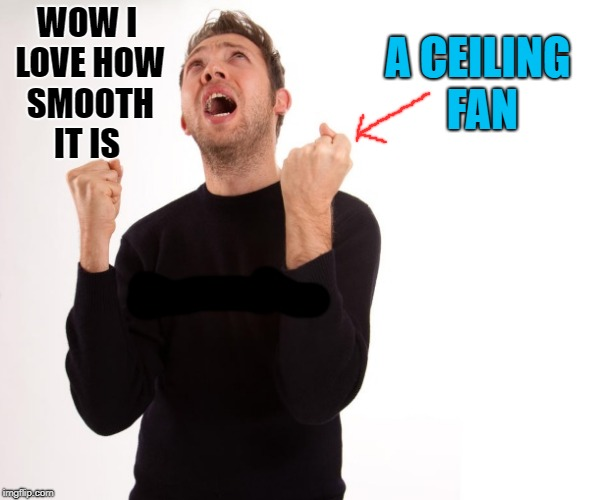 A ceiling fan | WOW I LOVE HOW SMOOTH IT IS A CEILING FAN | image tagged in fan,ceiling fan,silly | made w/ Imgflip meme maker