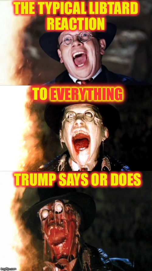 THE TYPICAL LIBTARD REACTION TRUMP SAYS OR DOES TO EVERYTHING EVERYTHING | image tagged in nazi melt 2 | made w/ Imgflip meme maker