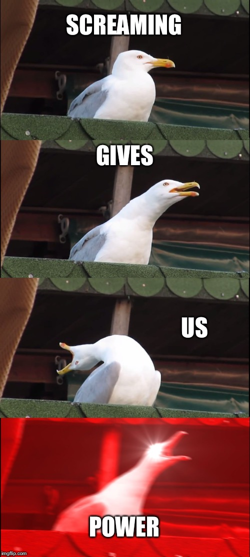 Inhaling Seagull Meme | SCREAMING GIVES US POWER | image tagged in memes,inhaling seagull | made w/ Imgflip meme maker