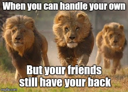 Stronger in numbers  | When you can handle your own But your friends still have your back | image tagged in memes,strong,lion,friends,powerful | made w/ Imgflip meme maker