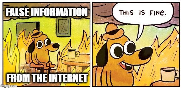 This Is Fine |  FALSE INFORMATION; FROM THE INTERNET | image tagged in this is fine dog,internet,false,welcome to the internets,misinformation,internet trolls | made w/ Imgflip meme maker