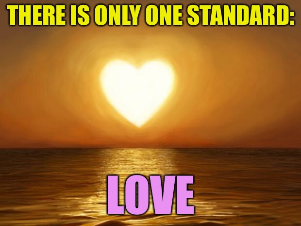 . | THERE IS ONLY ONE STANDARD: LOVE | image tagged in memes,politics,religion,gender,im done with concrete slab week,cash me ousside | made w/ Imgflip meme maker