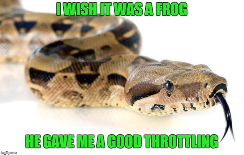 I WISH IT WAS A FROG HE GAVE ME A GOOD THROTTLING | made w/ Imgflip meme maker