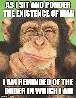 | AS I SIT AND PONDER THE EXISTENCE OF MAN I AM REMINDED OF THE ORDER IN WHICH I AM | image tagged in chimpanzee thinking | made w/ Imgflip meme maker