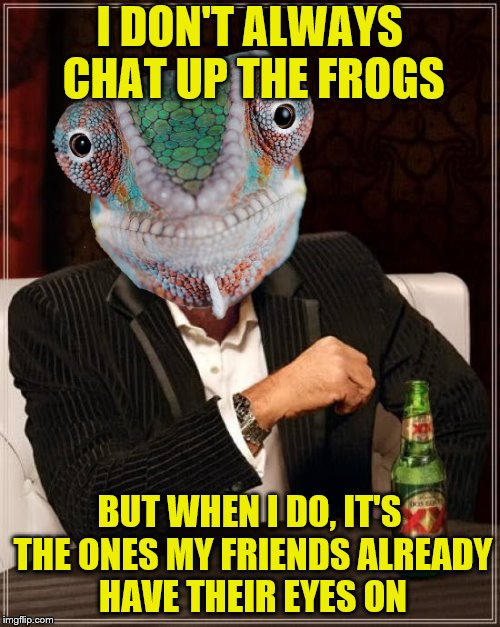I DON'T ALWAYS CHAT UP THE FROGS BUT WHEN I DO, IT'S THE ONES MY FRIENDS ALREADY HAVE THEIR EYES ON | made w/ Imgflip meme maker