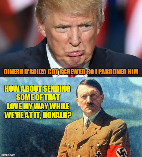 probably won't get featured but I had the submission so what the hey... | DINESH D'SOUZA GOT SCREWED SO I PARDONED HIM HOW ABOUT SENDING SOME OF THAT LOVE MY WAY WHILE WE'RE AT IT, DONALD? | image tagged in memes,trump,hitler,pardon,politics | made w/ Imgflip meme maker