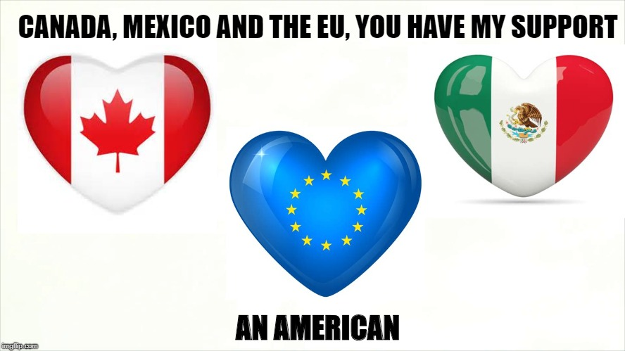 Punishing Friends? | CANADA, MEXICO AND THE EU, YOU HAVE MY SUPPORT AN AMERICAN | image tagged in trump,trade,tariffs,canada,mexico,european union | made w/ Imgflip meme maker