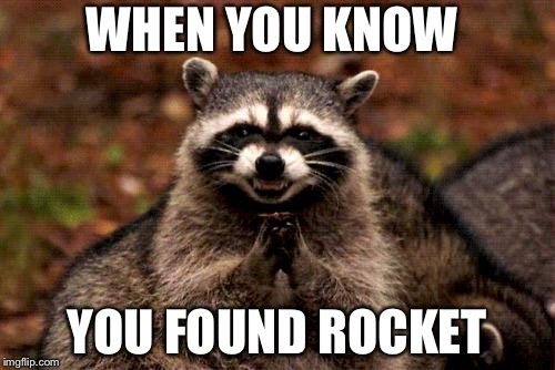 Evil Plotting Raccoon | WHEN YOU KNOW YOU FOUND ROCKET | image tagged in memes,evil plotting raccoon | made w/ Imgflip meme maker