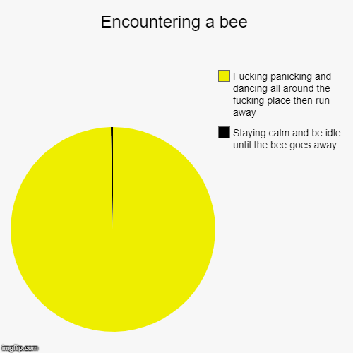 Encountering a bee | Staying calm and be idle until the bee goes away, F**king panicking and dancing all around the f**king place then run a | image tagged in funny,pie charts | made w/ Imgflip pie chart maker