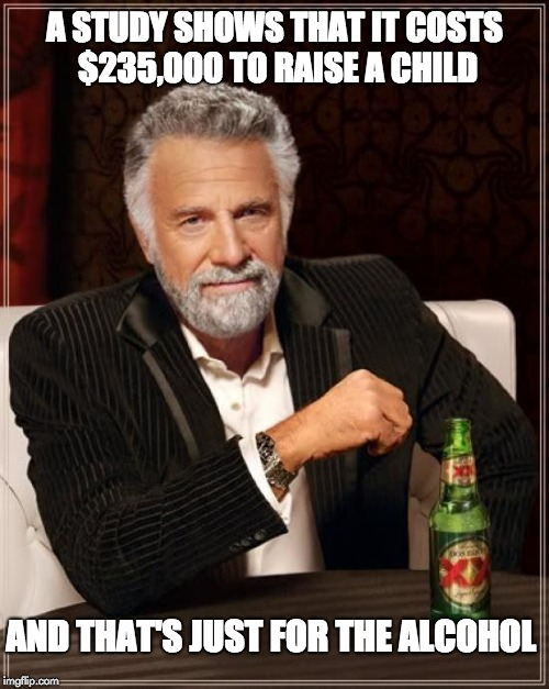 The Most Interesting Man In The World Meme | A STUDY SHOWS THAT IT COSTS $235,000 TO RAISE A CHILD AND THAT'S JUST FOR THE ALCOHOL | image tagged in memes,the most interesting man in the world | made w/ Imgflip meme maker