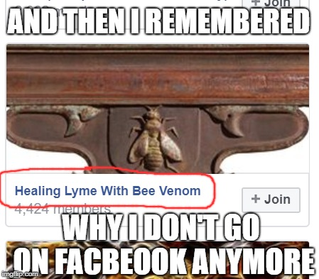 There are 4,424 actual people that believe Lyme disease can be healed with bee stings out there... | AND THEN I REMEMBERED WHY I DON'T GO ON FACBEOOK ANYMORE | image tagged in facebook,facepalm,bees,morons | made w/ Imgflip meme maker