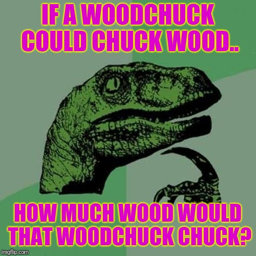Keeps me up at night | IF A WOODCHUCK COULD CHUCK WOOD.. HOW MUCH WOOD WOULD THAT WOODCHUCK CHUCK? | image tagged in memes,philosoraptor | made w/ Imgflip meme maker