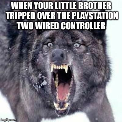 Angry Wolf | WHEN YOUR LITTLE BROTHER TRIPPED OVER THE PLAYSTATION TWO WIRED CONTROLLER | image tagged in angry wolf | made w/ Imgflip meme maker