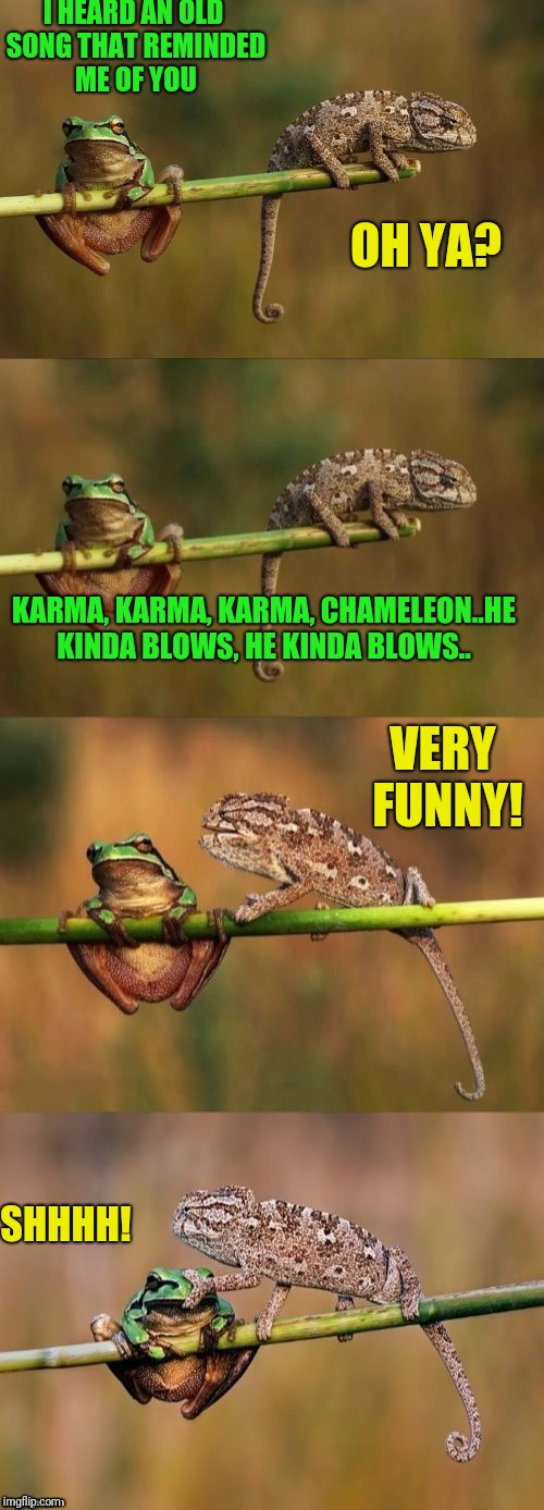 Boy George approved | I HEARD AN OLD SONG THAT REMINDED ME OF YOU SHHHH! OH YA? KARMA, KARMA, KARMA, CHAMELEON..HE KINDA BLOWS, HE KINDA BLOWS.. VERY FUNNY! | image tagged in karma | made w/ Imgflip meme maker