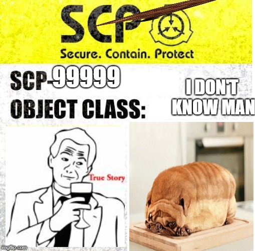 975t454gr4cnc b4 gr vn v v./.v//bgrjedfs | 99999 I DON'T KNOW MAN | image tagged in scp sign generator,scumbag,scp,memes,dogs,true story | made w/ Imgflip meme maker