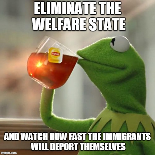 But Thats None Of My Business Meme | ELIMINATE THE WELFARE STATE AND WATCH HOW FAST THE IMMIGRANTS WILL DEPORT THEMSELVES | image tagged in memes,but thats none of my business,kermit the frog | made w/ Imgflip meme maker