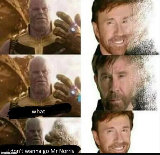 Thanos can't get rid of Chuck norris! he is too good to go! | WHAT I DON'T WANNA GO MR NORRIS | image tagged in avengers infinity war,chuck norris,thanos | made w/ Imgflip meme maker