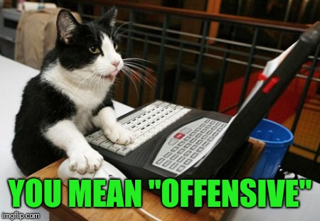 "Fact Cat | YOU MEAN ""OFFENSIVE"" 