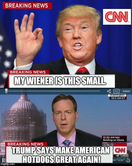 Phake news rulz | MY WIENER IS THIS SMALL. TRUMP SAYS MAKE AMERICAN HOTDOGS GREAT AGAIN! | image tagged in cnn spins trump news | made w/ Imgflip meme maker